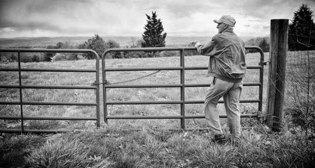 Wallace Goins looks out at his field. photo by Cameo Waters - 2016