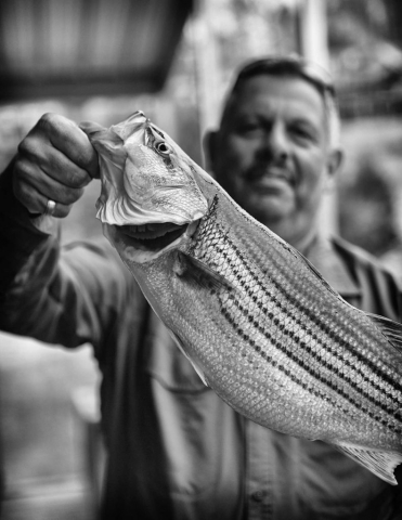 Randy Corbitt of Cincinnati, Ohio, holds up a striper fish after his annual fishing trip on Norris Lake with his son, RJ. photo by Kellie Ward - 2019