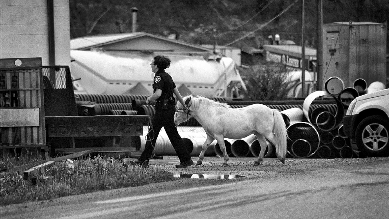 Offi cer Jarrett stops traffi c to wrangle a pony on the railroad tracks at Towe String Road. photo by Lindsey Lynch - 2007