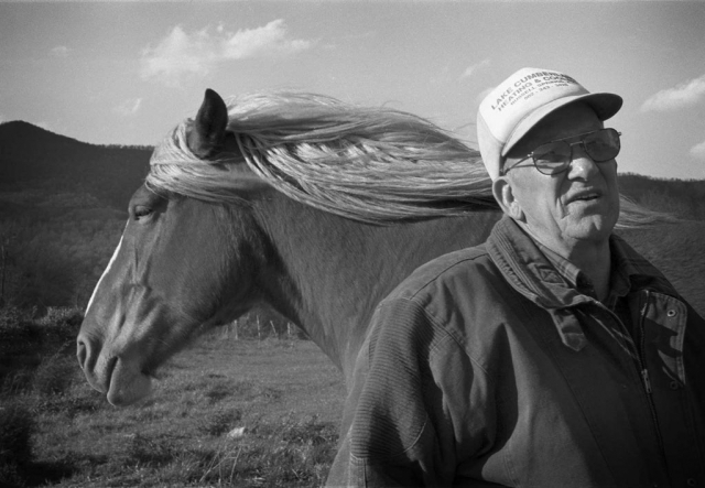 Local horse buyer Bill Claiborne does a bit of shopping Friday afternoon as the Shepherd's family farm. photo by Matt Emigh - 1999